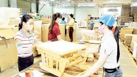 Wood exports increase thanks to foreign investment