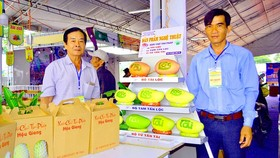Word-imprinted mangoes, a special product of Hau Giang Province's farmers. (Photo: SGGP)