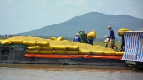 An Giang Province asks for permission to export rice