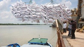 Paddy prices slightly increase after resumption of rice export
