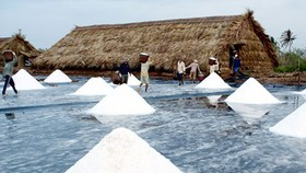 Salt farmers in need of financial support