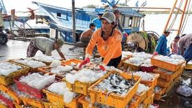Aquatic production focuses on serving domestic market