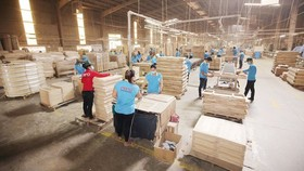The wood and wooden product processing industry has a high inventory in the first six months of this year. (Photo: SGGP)