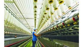 Textile production at Phong Phu Corporation. (Photo: SGGP)