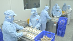 Production at a company in Ho Chi Minh City. (Photo: SGGP)