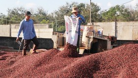 Export turnover of many agricultural products exceeds US$2 billion