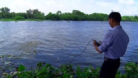 Nearly 40,000 ha of fruit trees possibly face water shortage in Mekong Delta