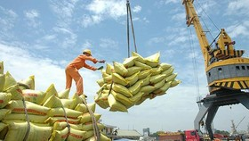 More than 200 enterprises qualified for exporting rice