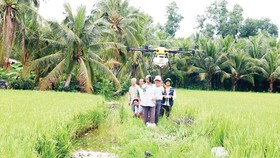 Agricultural production in Mekong Delta amid age of digital transformation