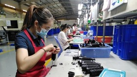 Foreign enterprises place trust, raise investment in Dong Nai