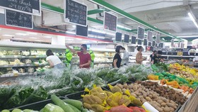 HCMC's CPI rises 0.33 percent in May
