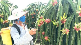 Solutions needed for agricultural products to no longer call for rescue