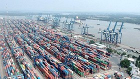 Tan Cang Cat Lai Port temporarily suspends receipt of goods
