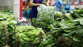 Hanoi: Fresh food prices rise 20-30 percent as some wholesale markets close