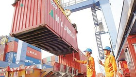 Cat Lai Port resumes rice export activities at Berth 125