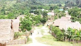 Bản Búng của người Đan Lai nằm trong vùng lõi Vườn quốc gia Pù Mát, huyện Con Cuông, tỉnh Nghệ An. Ảnh: HOÀI NAM