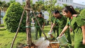 Phát động trồng cây xanh trong khuôn viên công sở