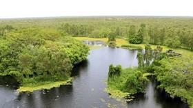 Khuyến khích đầu tư bảo tồn đa dạng sinh học