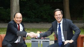 Prime Minister Nguyen Xuan Phuc (L) and his Dutch counterpart Mark Rutte (Source: VNA)