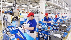 Average Tet bonus given by HCMC firms to an employee is VND8.8 million. (Photo: SGGP)