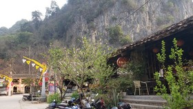 Number of foreign visitors to Vietnam in February falls sharply