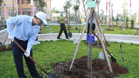 Deputy Secretary of the HCMC Party Committee Nguyen Ho Hai is planting a tree at the ceremony. (Photo SGGP)