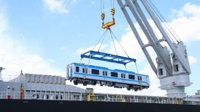 The trains will be transported to Long Binh depot in Thu Duc city for assembly on June 21 and June 23. (Photo: VNA)