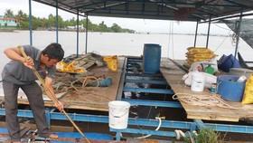 Nhiều bè cá trên sông Tiền chết chưa rõ nguyên nhân