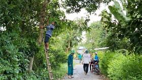 Người dân Lai Vung dọn đường sá đón ông Bảy trở về