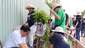 Nhân viên CEP cùng người dân trồng cây xanh trên tuyến đường Bình Long