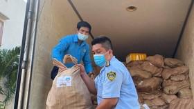 Gần 10 tấn cá biển từ tỉnh Quảng Bình đã đến TPHCM