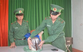 圖為查獲的毒品贓物。(圖源:人民軍隊報網)