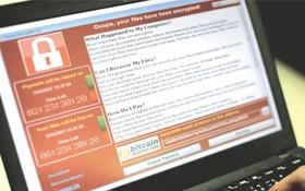 使用電腦者要經常更新防病毒軟件。(圖源:互聯網)