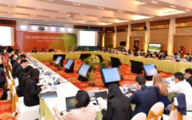 APEC財政高官會議於昨(18)日在寧平省召開。(圖源:互聯網)