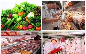 食品安全是重大的民生問題。(示意圖來源:互聯網)