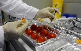 國際原子能機構位於奧地利杜塞爾多夫的食品和環境實驗室。(圖源:原子能機構)