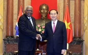 國家主席陳大光接見埃斯特萬主席。(圖源:VOV)