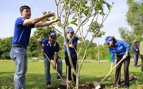 本市青年植樹以保護環境。(圖源:互聯網)