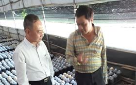 林春忠總經理(右)介紹他種植 的靈芝。