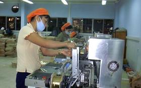 去年,越南食品加工業的增長額為百分之十。