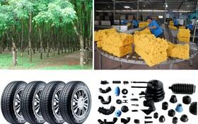 本市將從9月13至16日在第七郡西貢會展中心舉辦的越南塑料與橡膠工業展。(示意圖源:互聯網)