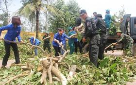 共青團員、部隊與老師一起打掃乂安爐門市宜海小學校園。