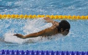 游泳運動員微氏姮。
