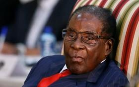 津巴布韋總統穆加貝同意有條件辭職。(圖源:AFP)