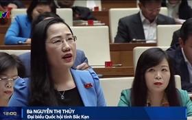 北件省代表、國會司法委員會常務委員阮氏水在會場上發言。(圖源:VTV視頻截圖)