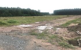 阿里巴巴房地產股份公司推介位於隆城縣的項目其實只是一片荒地。