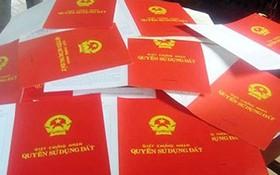 土地使用權證書(紅簿)將註明共同持有土地使用權的家庭成員的姓名。(示意圖源:互聯網)