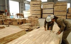 去年我國木材出口首次達到80億美元,同比增10.2%。今年林產品出口目標為 90 億美元。(示意圖源:互聯網)