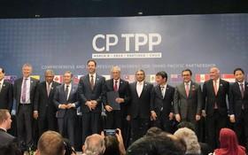 CPTPP 11成員國代表合照。