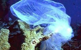 聯合國環境規劃署(UNEP)6月30日匯總的調查結果顯示,已有至少67個國家及地區採取限制措施,禁止生產塑料購物袋和泡沫塑料餐盒等引起海洋污染的一次性塑料製品或在使用時收費。(示意圖源:共同社)